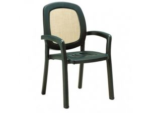 Europa Europa Leisure Beta Green Resin Dining Chair (Pack of 6)
