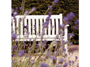 Alexander Rose White Painted 5ft Broadfield Bench