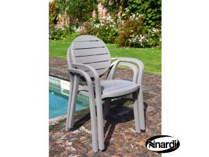 Europa Tutle Dove Palma Resin Chair Pack Of 2